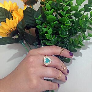 anel falange blog 1